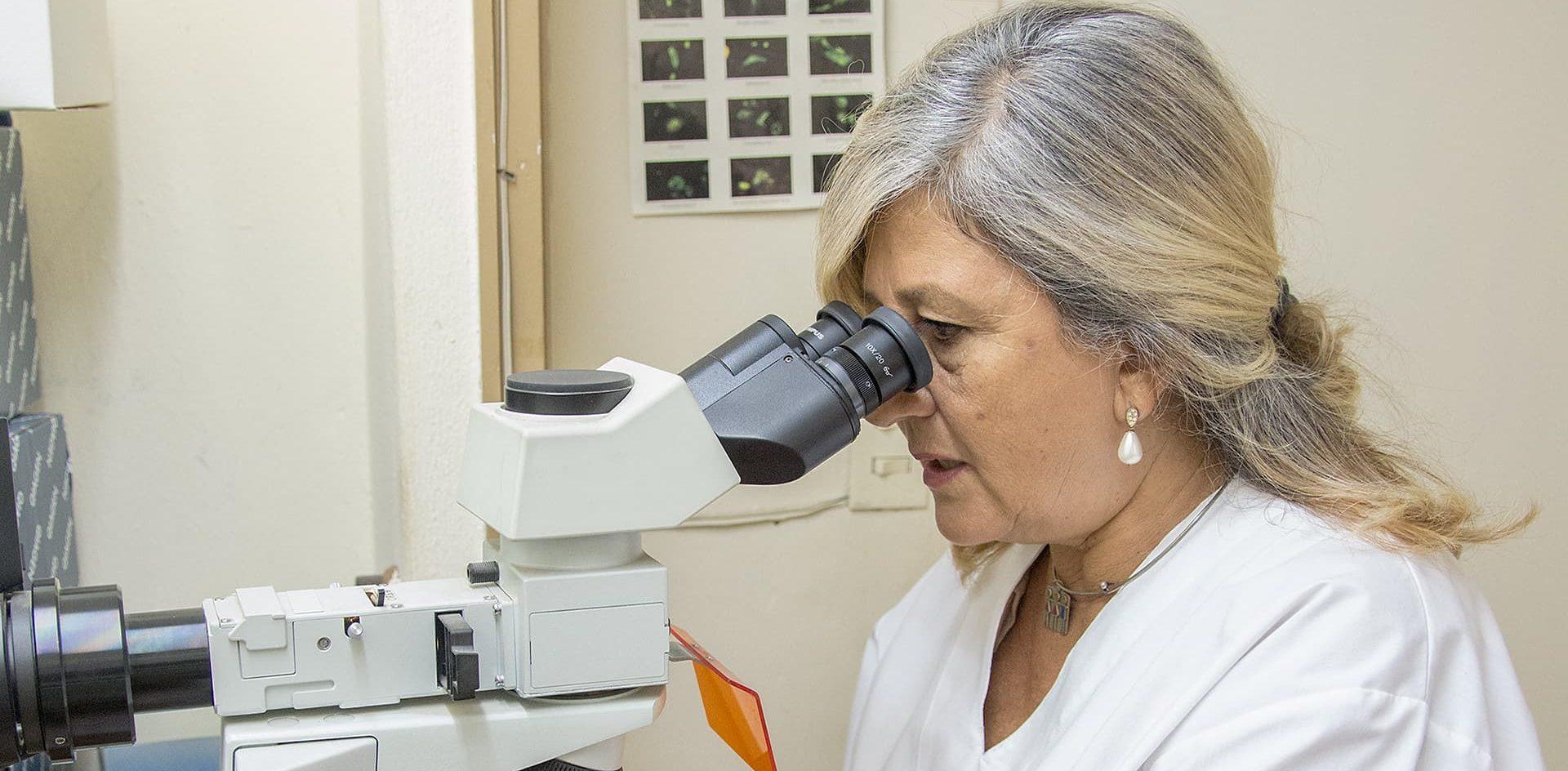 En Córdoba, el virus de la influenza podría ser más peligroso para la salud que el coronavirus