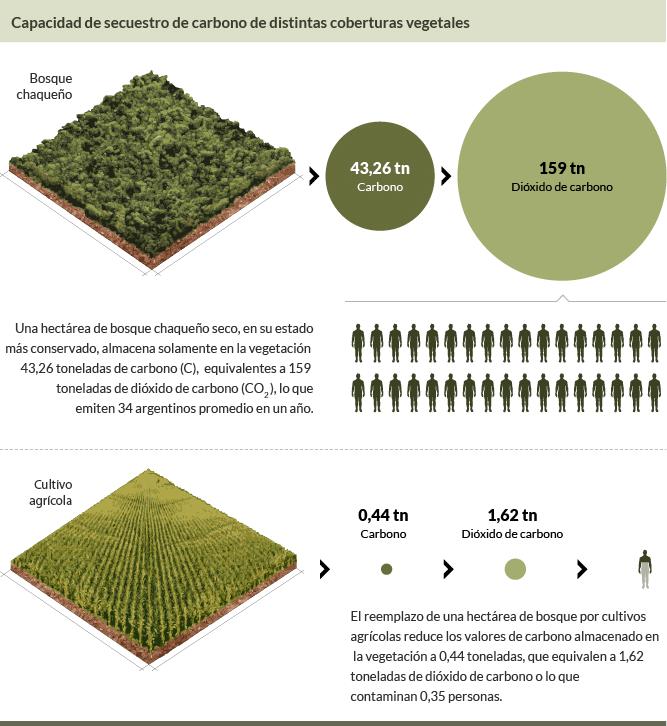 Capacidad de secuestro de dióxido de carbono