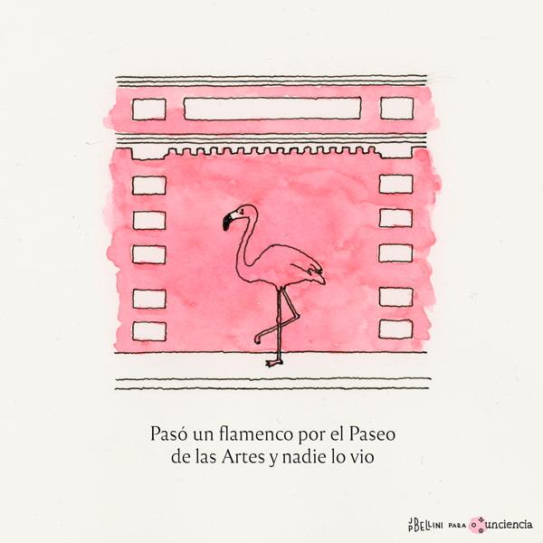 Flamenco en el Paseo de las Artes