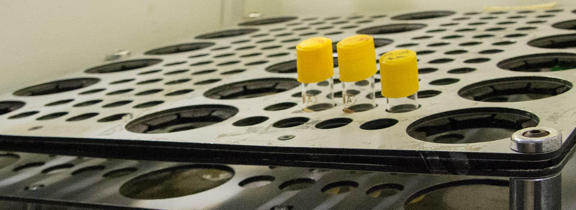 Imagen | Un modelo in vitro para desentrañar el mecanismo