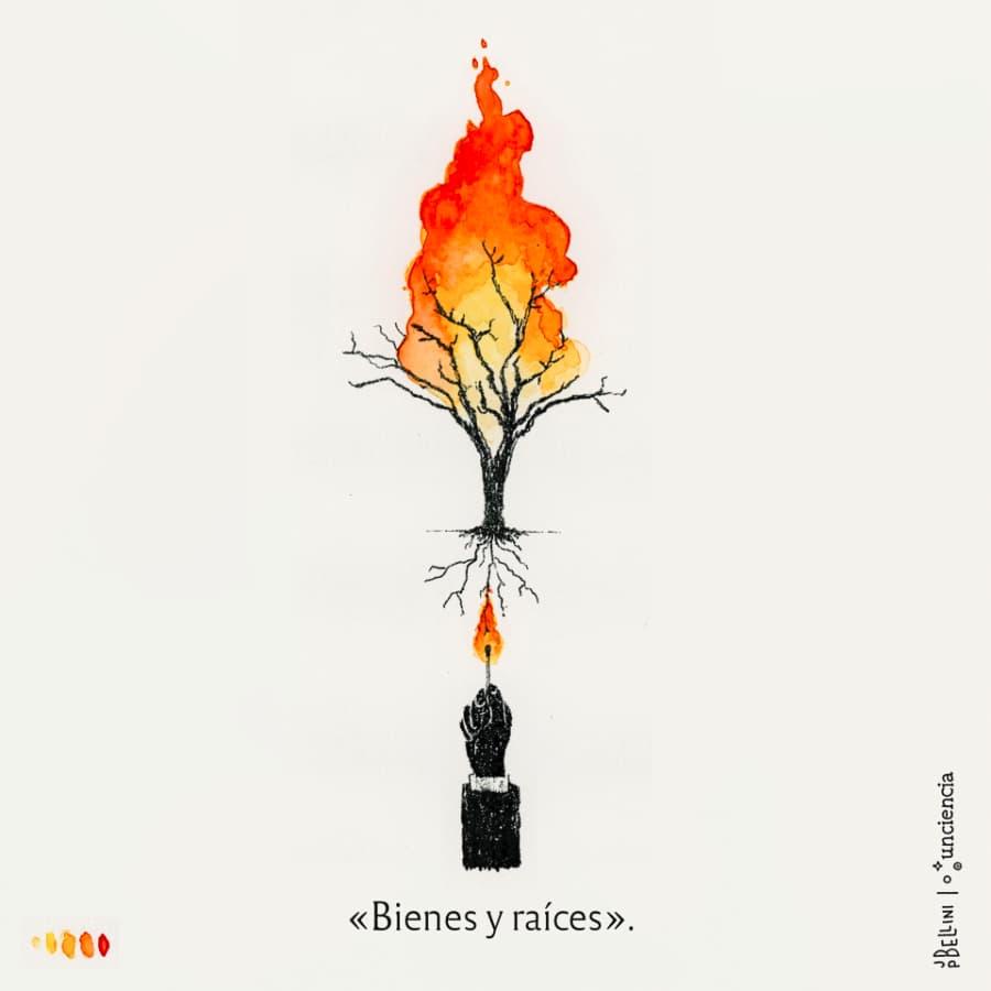 Incendios en Córdoba - II