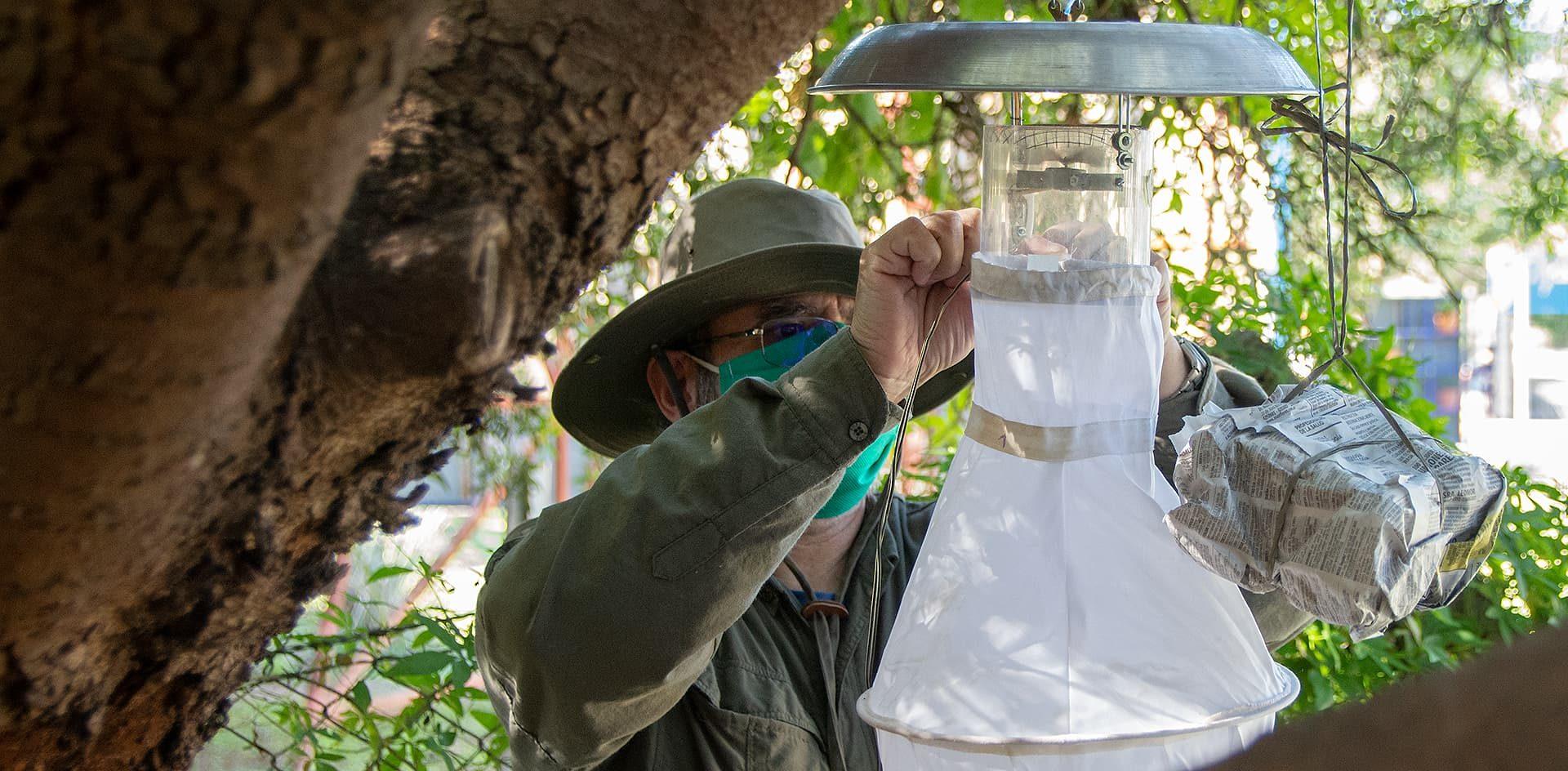 Identificarán cuáles son las zonas más calientes y con más mosquitos de la ciudad