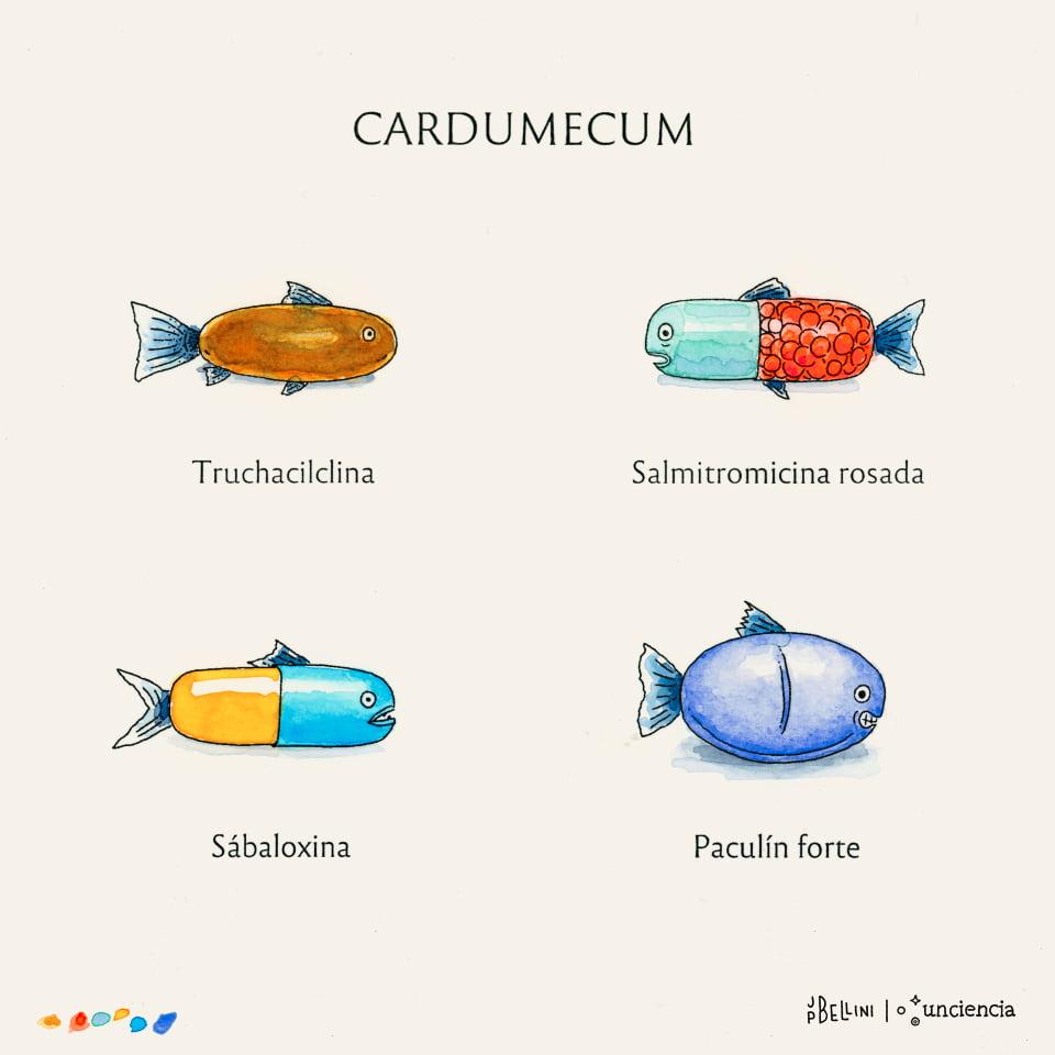 Acuarela | Detectan antibióticos en pescados comercializados para el consumo en Córdoba