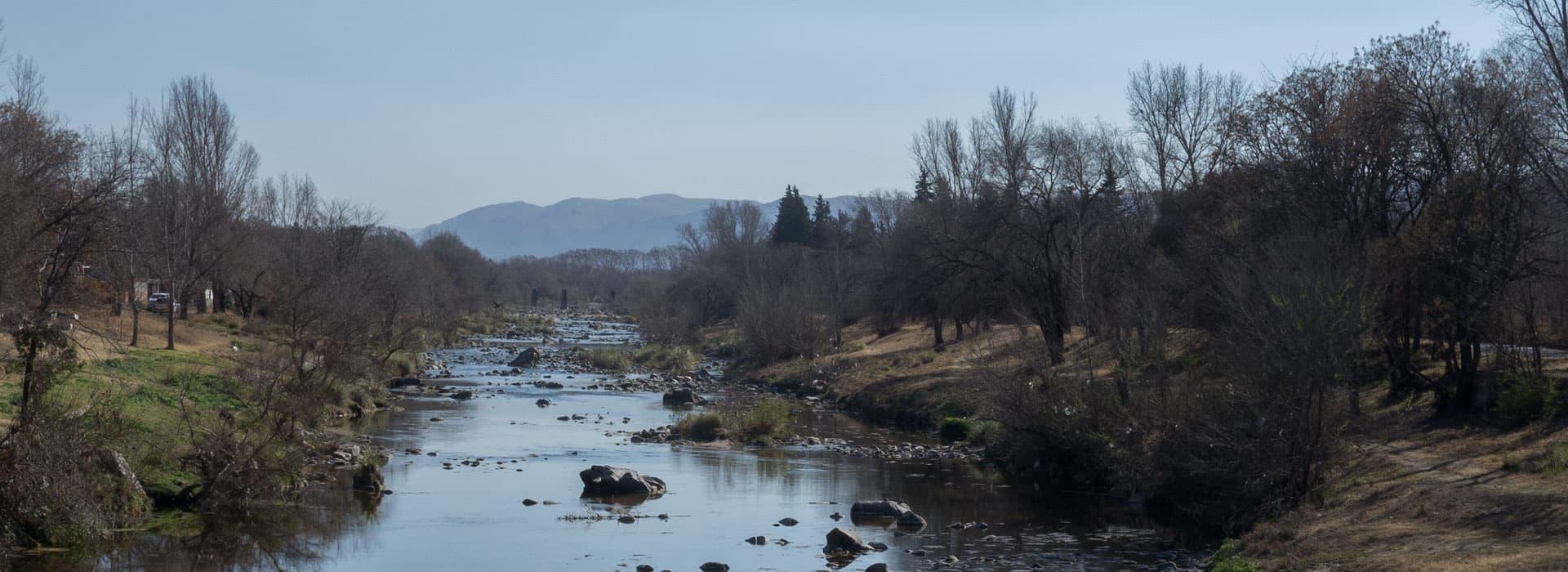 Imagen   Lucha por el agua y el bosque