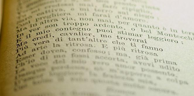 Elaboran el primer diccionario fraseológico bilingüe italiano-español
