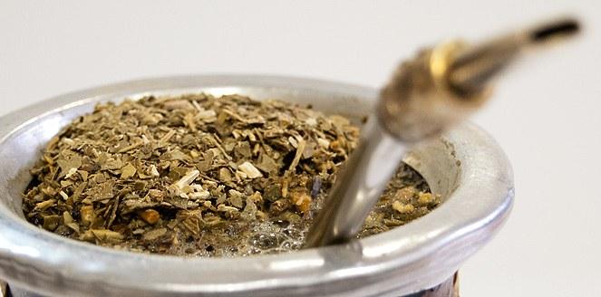 La yerba mate, una importante fuente de antioxidantes