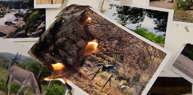 En 14 años, los incendios afectaron 657 mil hectáreas de las sierras cordobesas