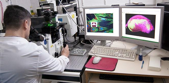 Invertirán 21,5 millones de pesos en una unidad de investigación y diagnóstico del cáncer en Córdoba
