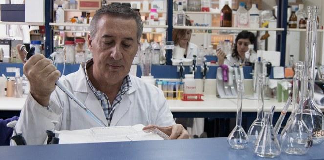 Descubren que una proteína es capaz de inhibir a un agresivo gen cancerígeno