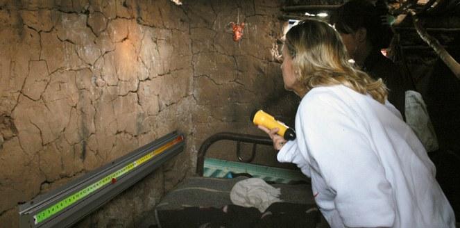 Chagas: diseñan un sistema de captura de vinchucas para zonas rurales